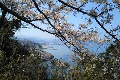 仙崎さわやか海岸と長門市街.jpg