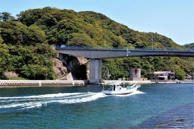 仙崎瀬戸と青海大橋.jpg