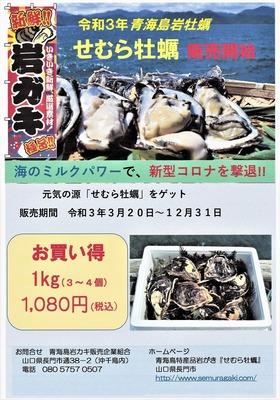 令和3年青海島岩牡蠣販売開始チラシ.jpg