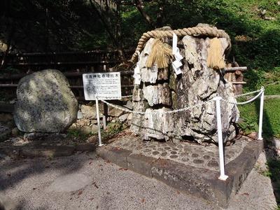 住吉神社の珪化木.jpg