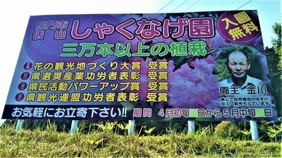 俵山しゃくなげ園.jpg