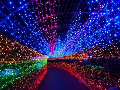 光のトンネル2.jpg