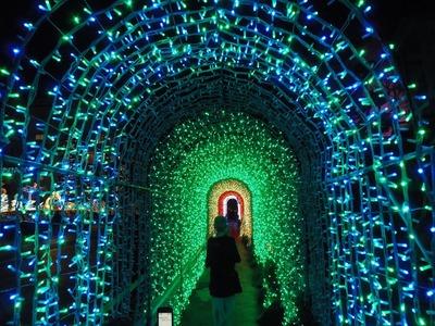 光のトンネル3.jpg