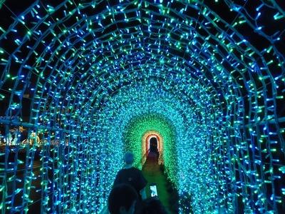 光のトンネル4.jpg