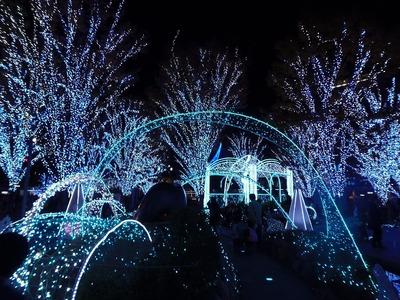 光の街・博多1.jpg