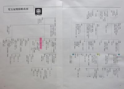 児玉家関係略系図.jpg