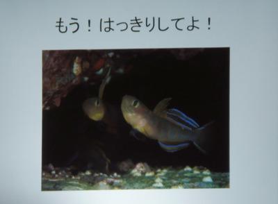 入選6作品.jpg