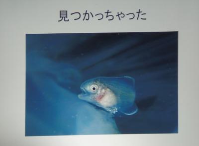 入選9作品.jpg