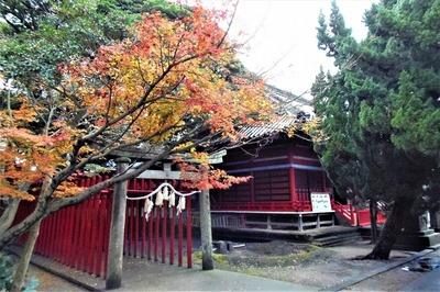 八坂神社の紅葉1.jpg