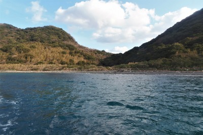 内海側の大島1.jpg
