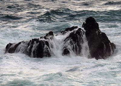 冬海のセムラ7.2.10.jpg