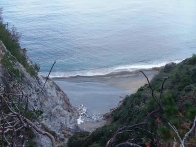 初対面の浜.jpg