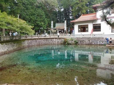 別府弁天の池1.jpg