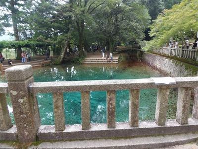 別府弁天の池2.jpg