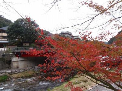 別邸音信と大谷山荘と紅葉1.jpg