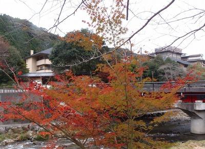 別邸音信と大谷山荘と紅葉2.jpg
