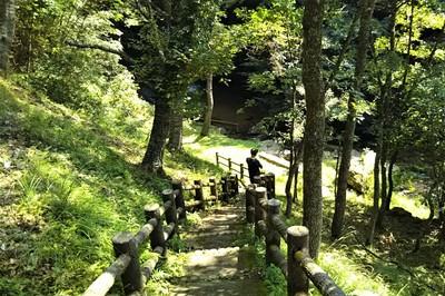 千代の滝への階段.jpg