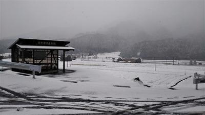 半田地区の雪化粧2.jpg