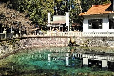 厳島神社と弁天池.jpg