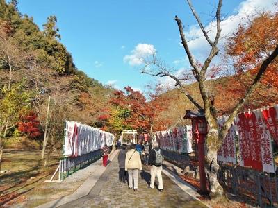 参道の秋色1.jpg