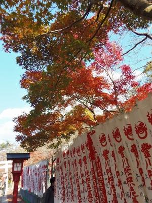 参道の秋色2.jpg