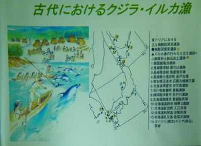 古代におけるクジラ・イルカ漁.jpg