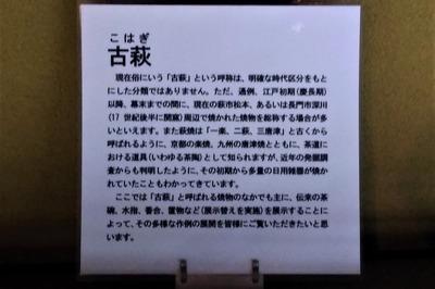 古萩の説明.jpg