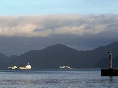 台風通過後の仙崎湾.jpg
