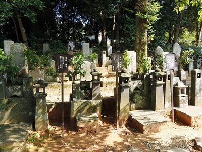 吉田家の墓.jpg