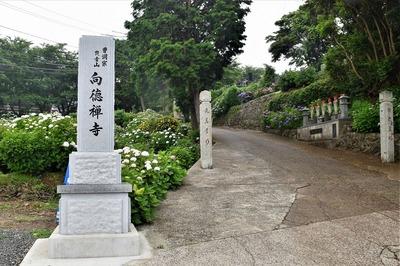 向徳寺参道入口.jpg