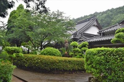 向徳禅寺の本堂と庫裡.jpg
