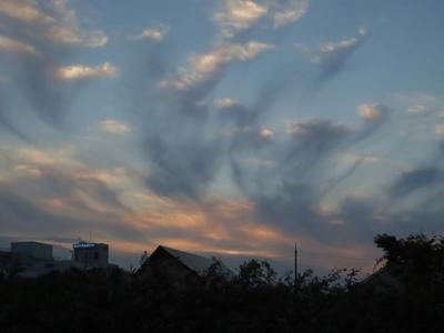 夕方の梅雨明け雲の葛藤4.7.19.jpg
