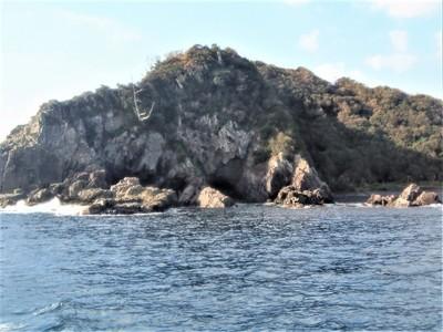 外海側の大島3.jpg