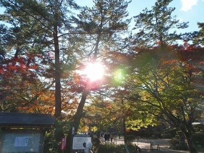 大寧寺の秋色.jpg