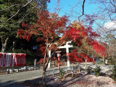 大寧寺の秋色1.jpg