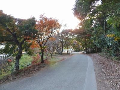 大寧寺入口2.jpg
