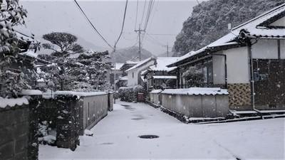 大日比の雪景色1.jpg