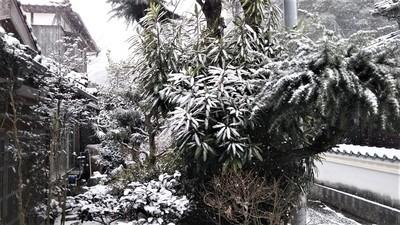 大日比の雪景色5.jpg