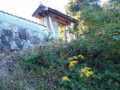 大日比三師本廟の山門と季節の花.jpg