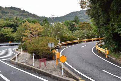 大日比峠県道分離帯.jpg