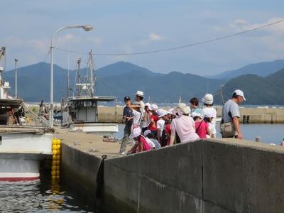 大日比漁港2.jpg