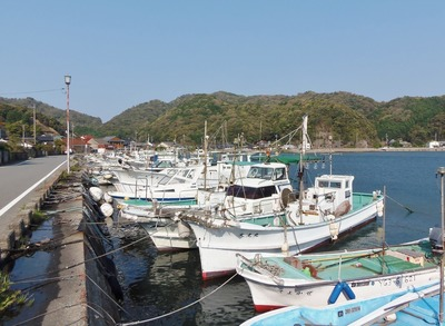 大泊の港1.jpg
