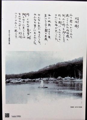 大泊港2.jpg
