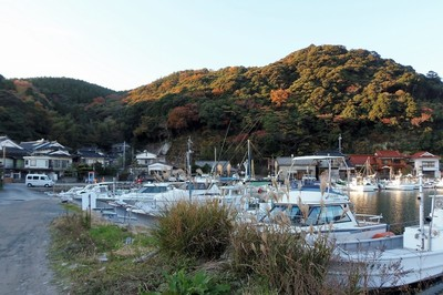 大泊港の秋色1.jpg