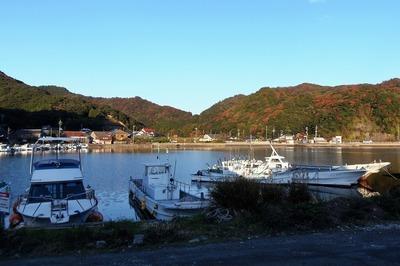 大泊港の秋色2.jpg
