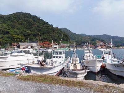 大泊漁港.jpg