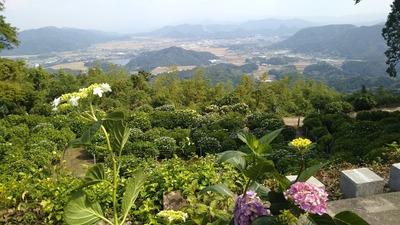大聖寺からの眺望武雄市.jpg