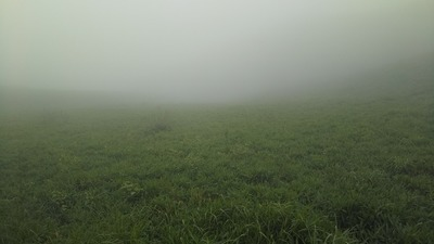大観峰の霧.jpg