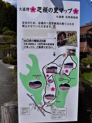 大道理芝桜里マップ.jpg