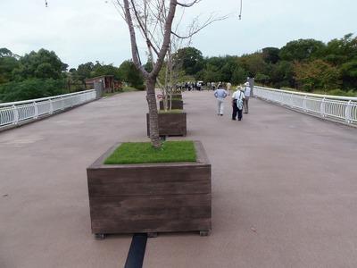 天の浮橋.jpg